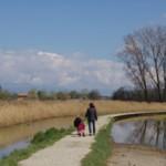 promenade 150x150 Les belles randonnées dans la campagne de Genève